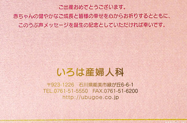 green-pink04.jpg
